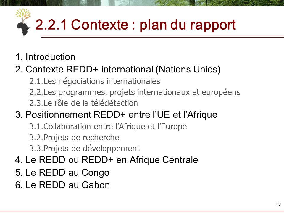 2.2.1 Contexte : plan du rapport