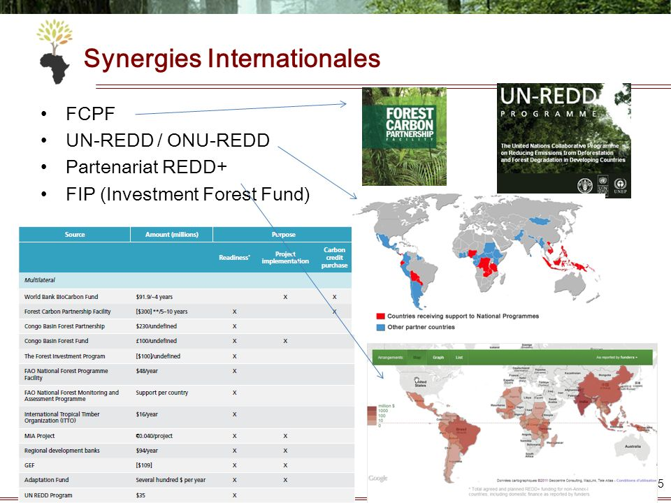 Synergies Internationales
