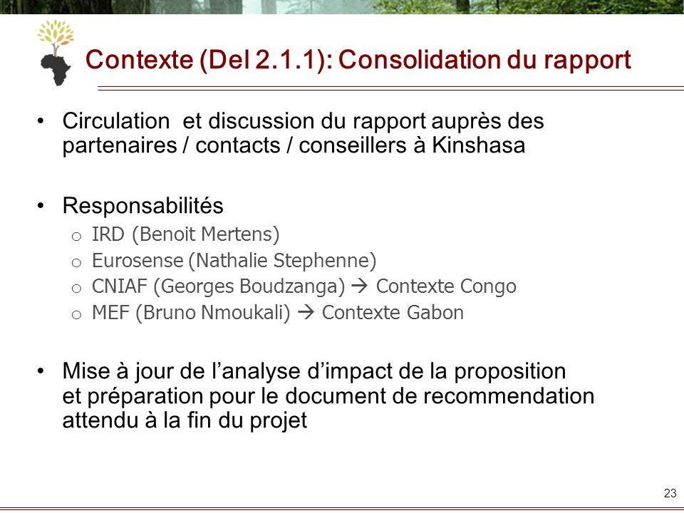 Contexte (Del 2.1.1): Consolidation du rapport