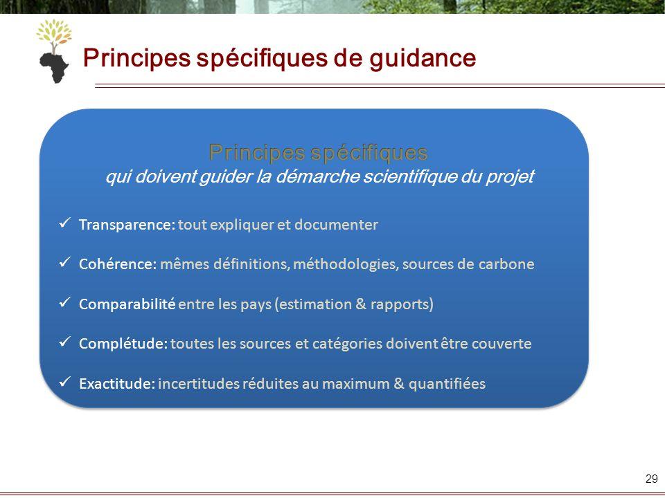 Principes spécifiques de guidance
