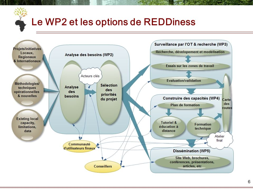 Le WP2 et les options de REDDiness