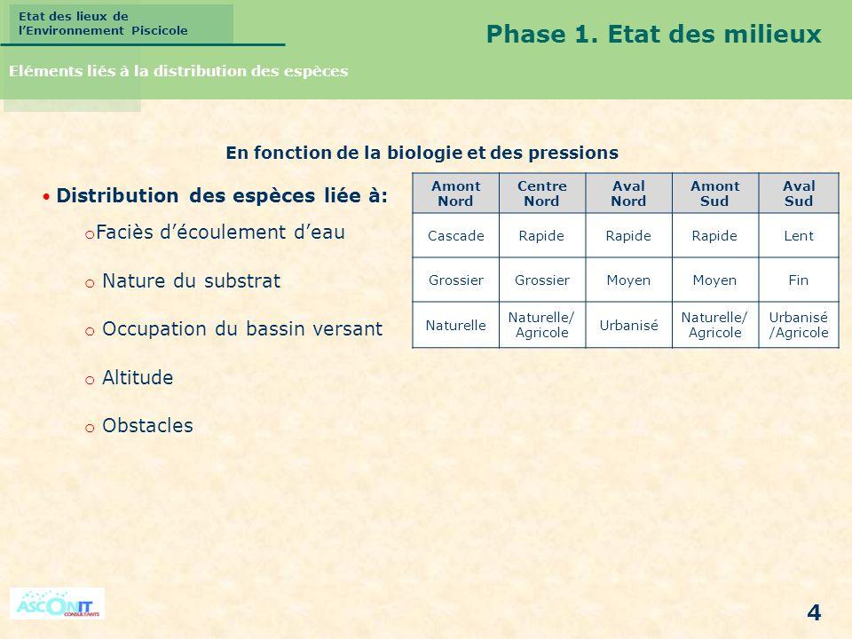 Phase 1. Etat des milieux Faciès d'écoulement d'eau Nature du substrat