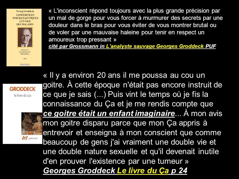 Georges Groddeck Le livre du Ça p 24