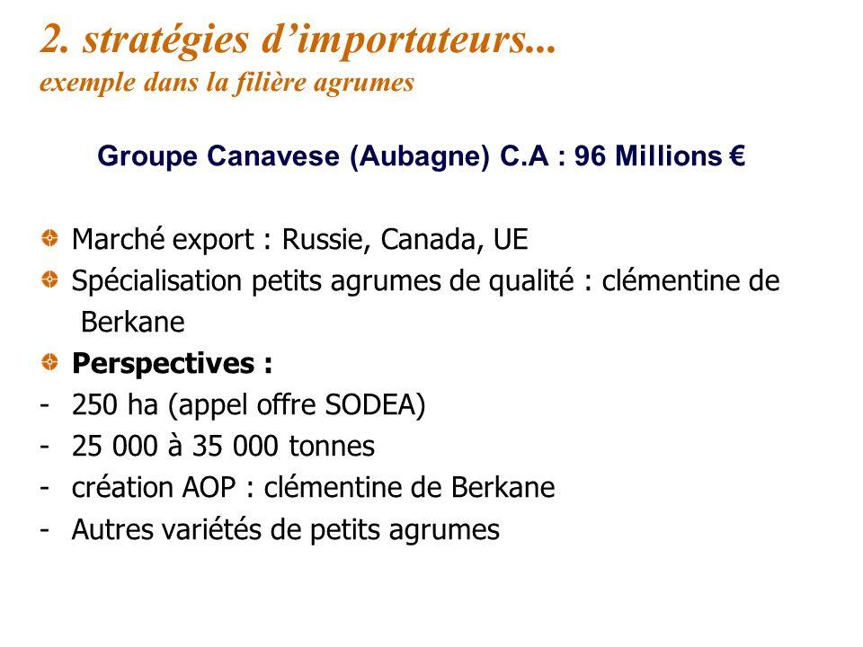 2. stratégies d'importateurs... exemple dans la filière agrumes