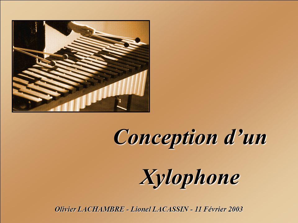 Olivier LACHAMBRE - Lionel LACASSIN - 11 Février 2003