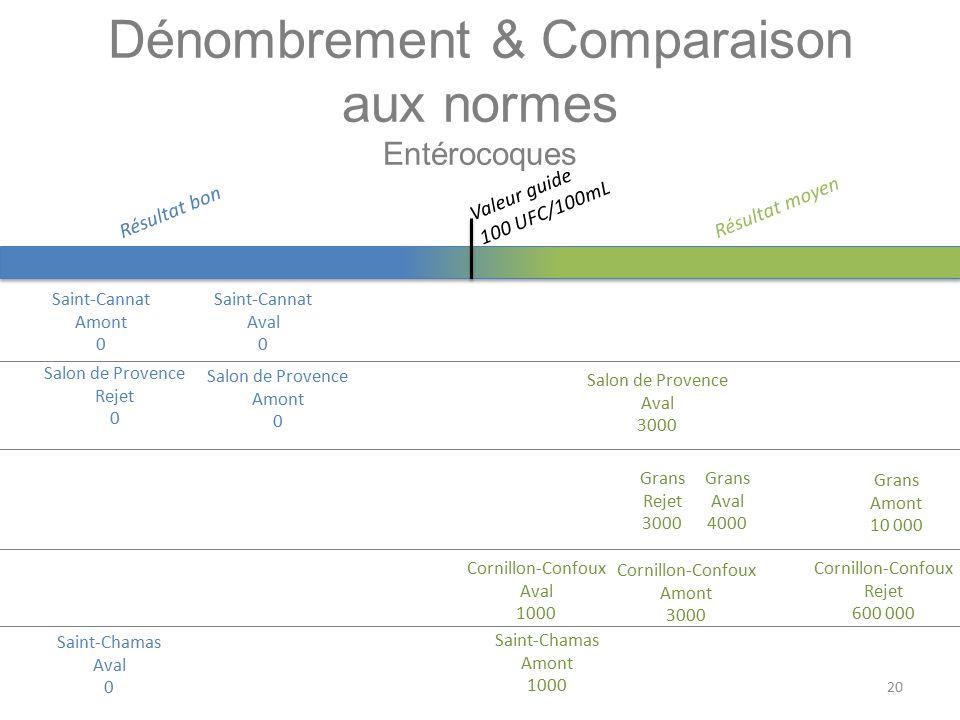 Dénombrement & Comparaison aux normes Entérocoques