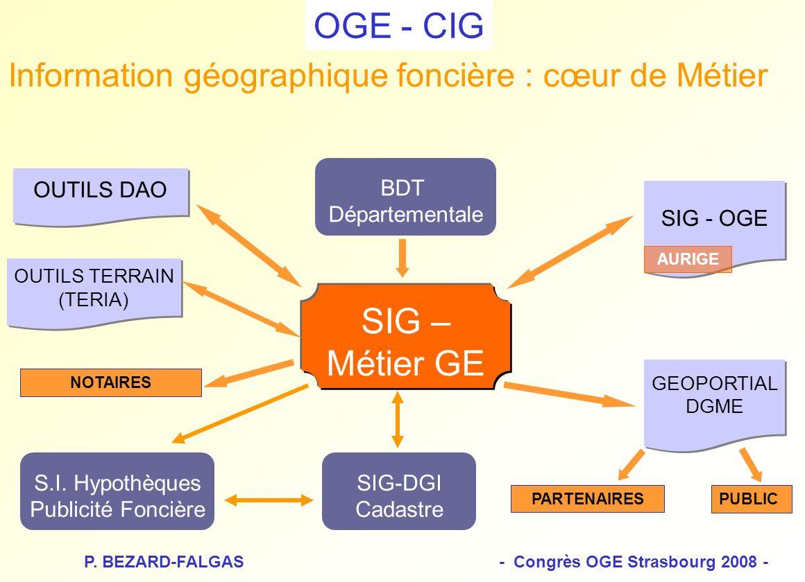 P. BEZARD-FALGAS - Congrès OGE Strasbourg 2008 -