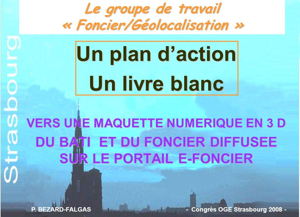 Le groupe de travail « Foncier/Géolocalisation »
