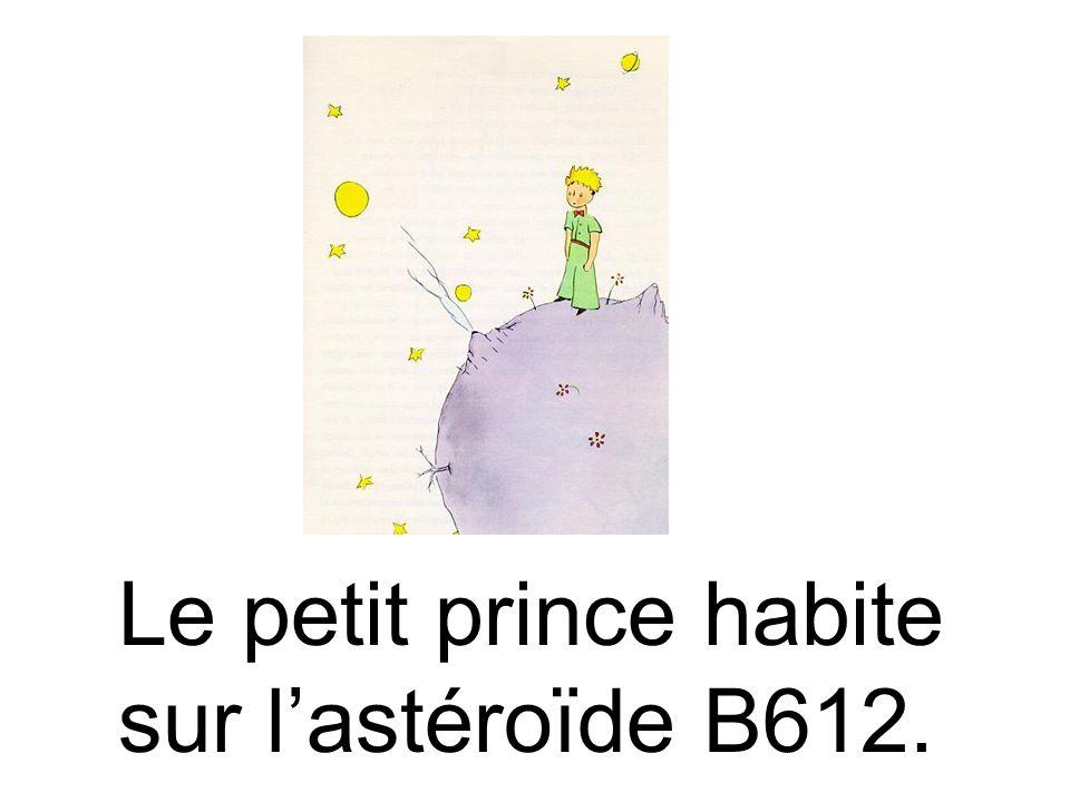 Le petit prince habite sur l'astéroïde B612.