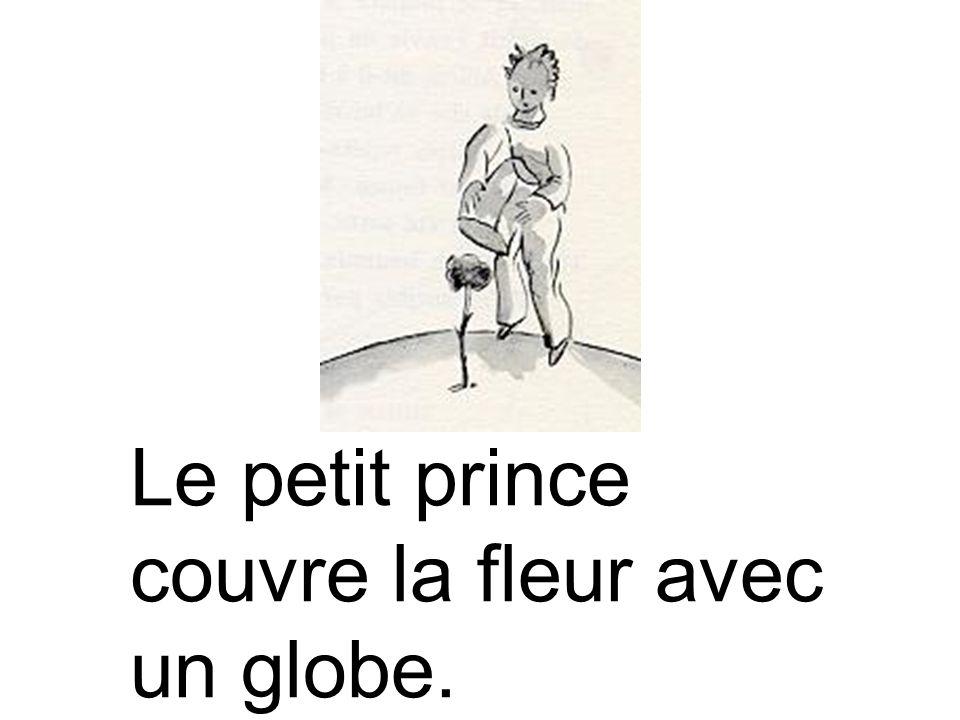 Le petit prince couvre la fleur avec un globe.