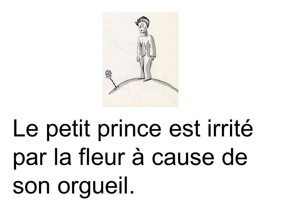 Le petit prince est irrité par la fleur à cause de son orgueil.