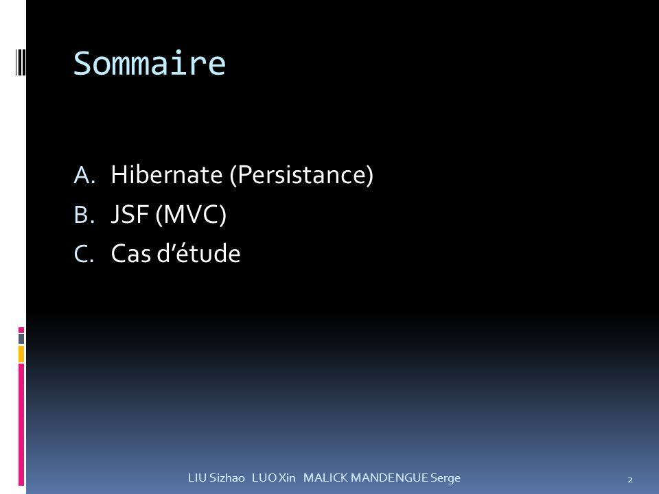 Sommaire Hibernate (Persistance) JSF (MVC) Cas d'étude