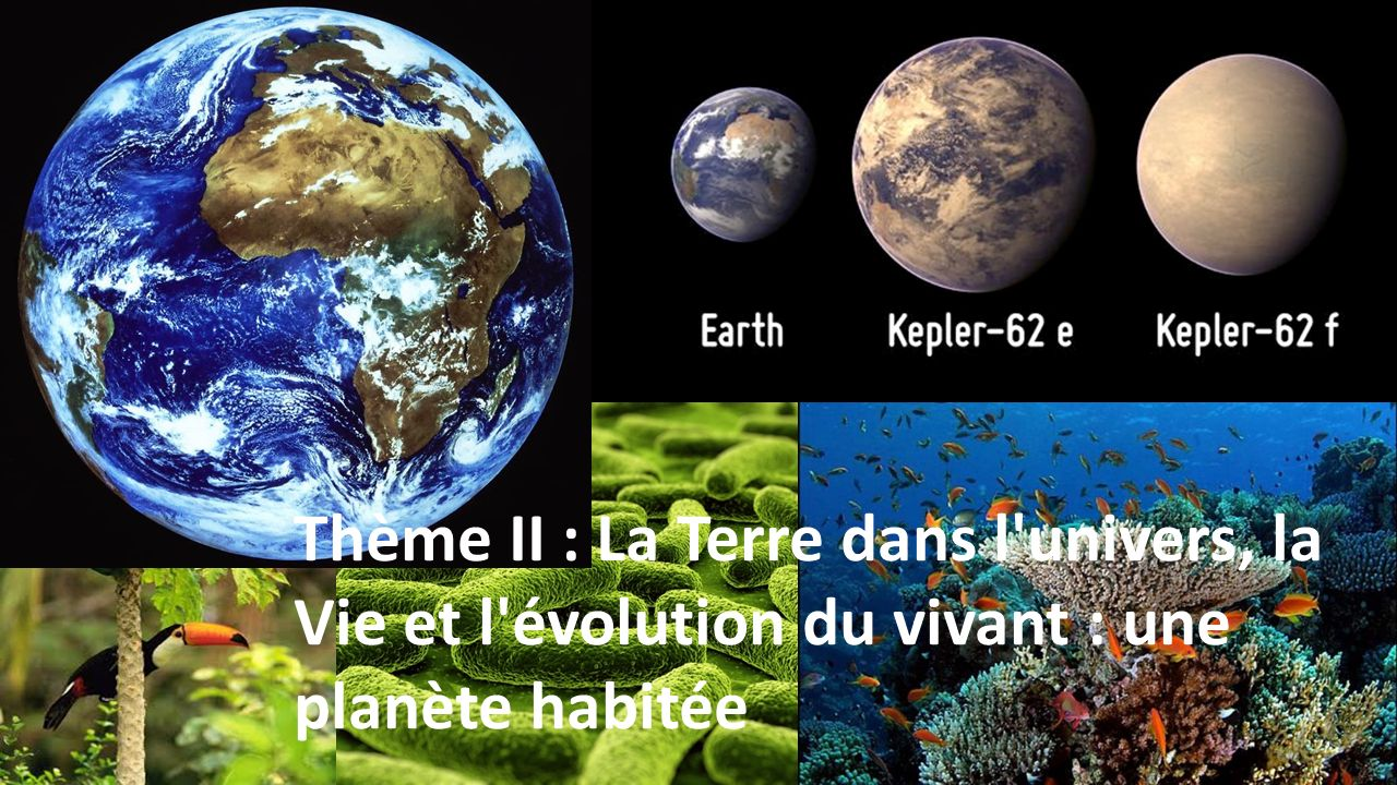 Thème II : La Terre dans l univers, la Vie et l évolution du vivant : une planète habitée