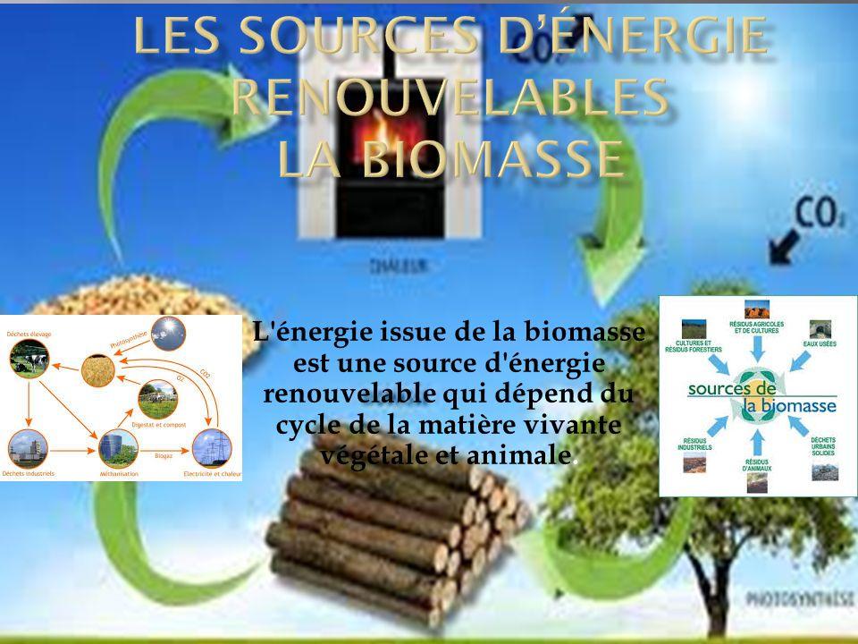 Les sources d'énergie renouvelables la biomasse