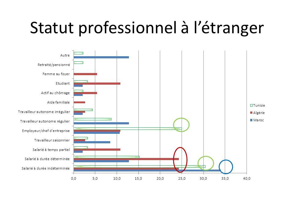 Statut professionnel à l'étranger