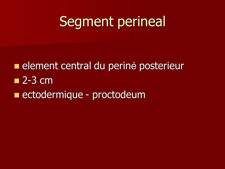 Segment perineal element central du periné posterieur 2-3 cm