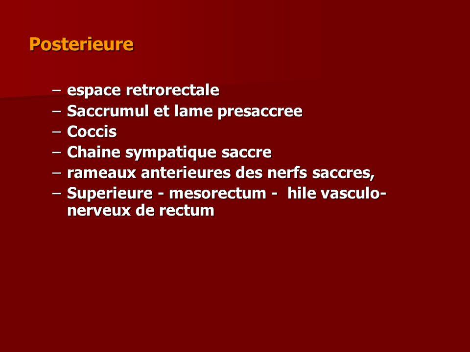 Posterieure espace retrorectale Saccrumul et lame presaccree Coccis