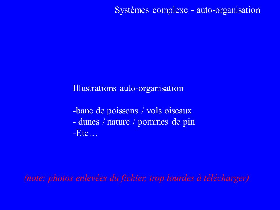 Systèmes complexe - auto-organisation