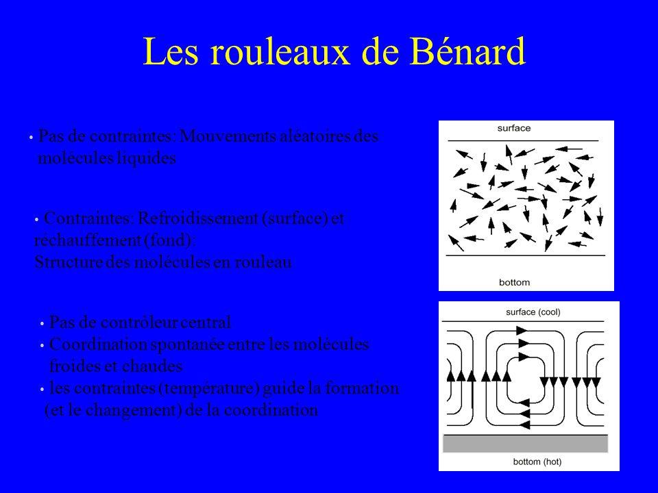 Les rouleaux de Bénard Pas de contraintes: Mouvements aléatoires des molécules liquides.