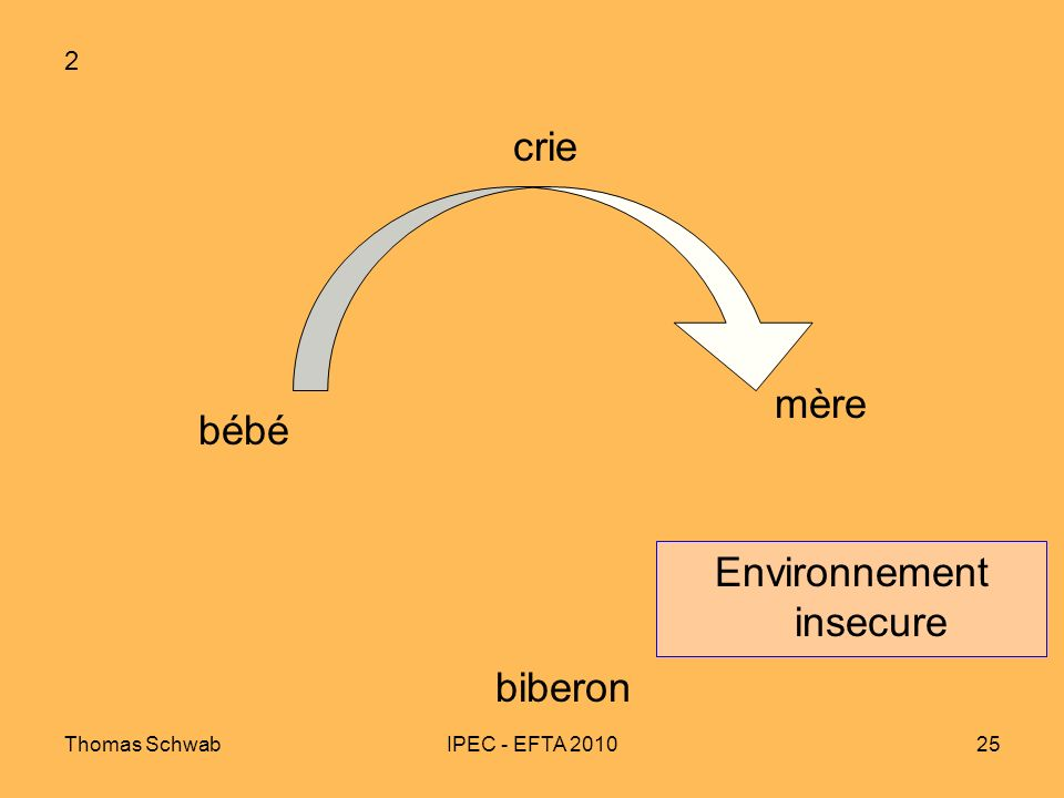 Environnement insecure