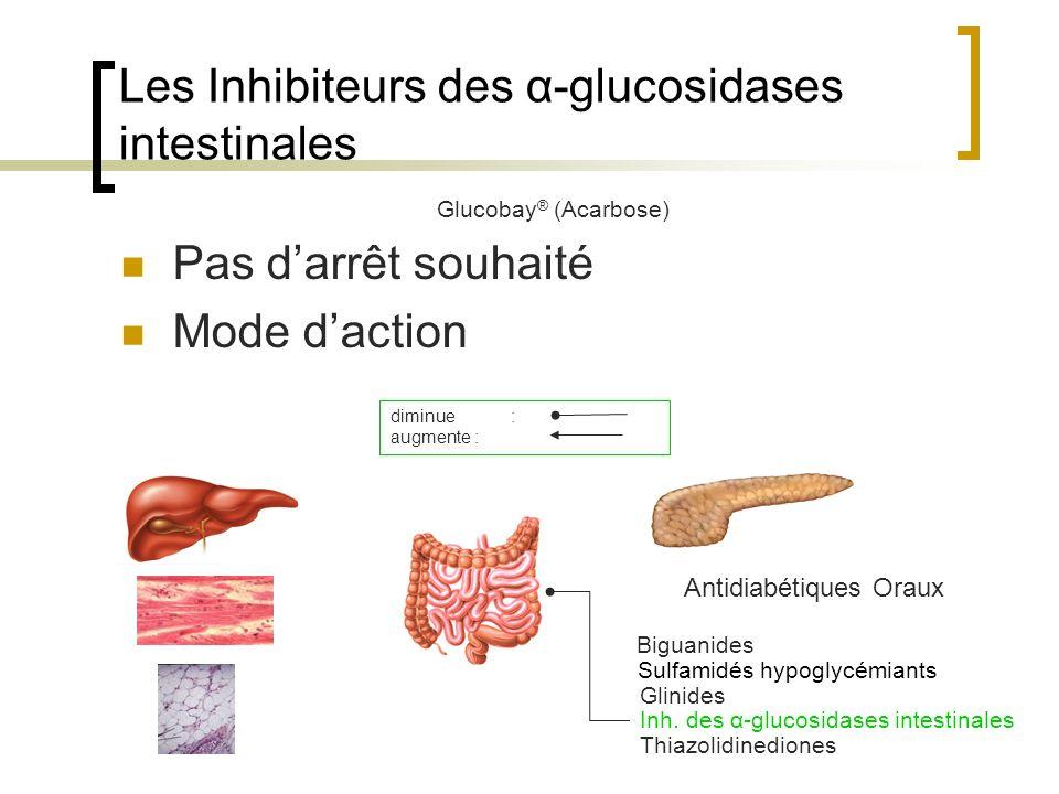 Les Inhibiteurs des α-glucosidases intestinales