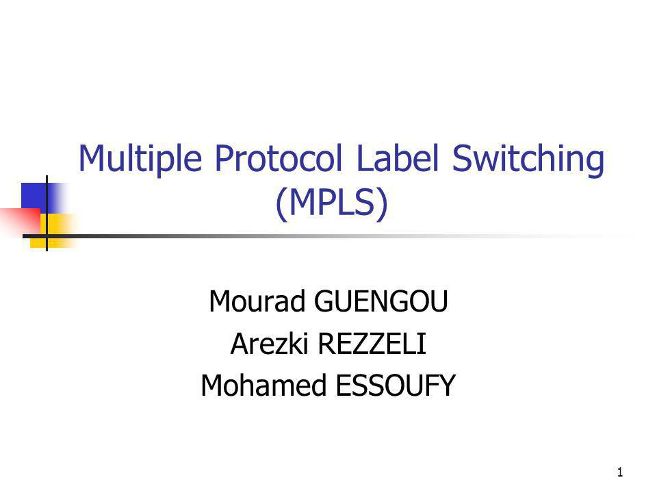 Multiple Protocol Label Switching (MPLS)