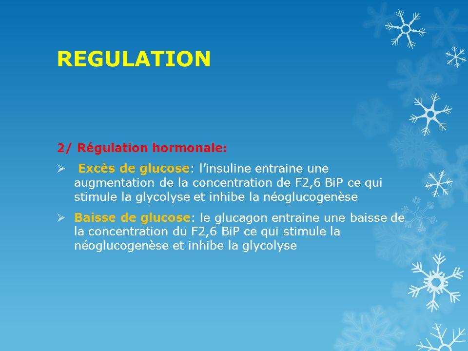 REGULATION 2/ Régulation hormonale: