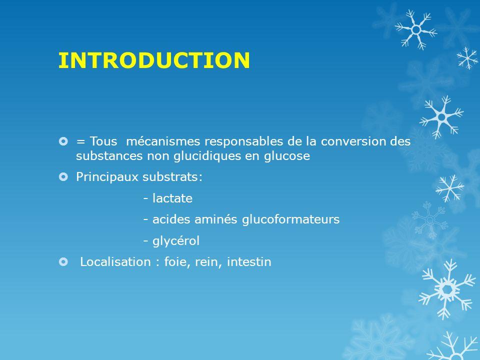 INTRODUCTION = Tous mécanismes responsables de la conversion des substances non glucidiques en glucose.