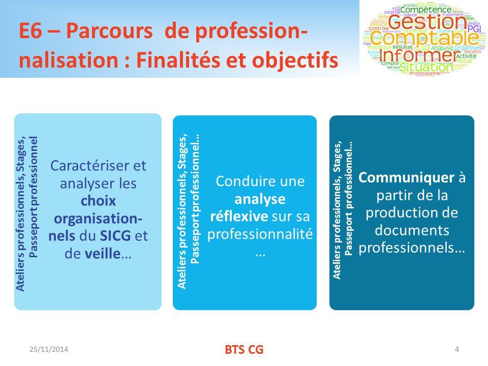 E6 – Parcours de profession- nalisation : Finalités et objectifs