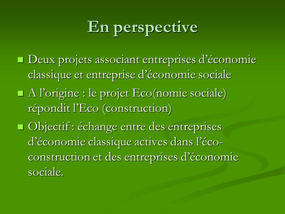 En perspective Deux projets associant entreprises d'économie classique et entreprise d'économie sociale.