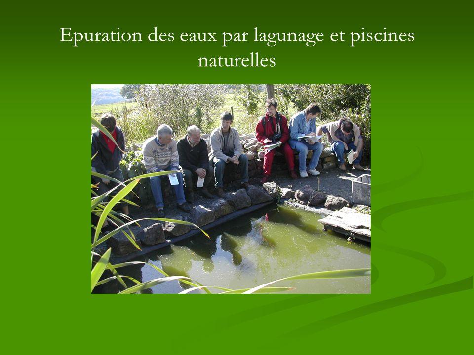 Epuration des eaux par lagunage et piscines naturelles