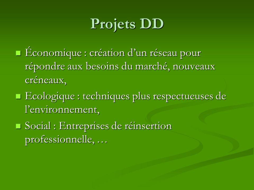 Projets DD Économique : création d'un réseau pour répondre aux besoins du marché, nouveaux créneaux,