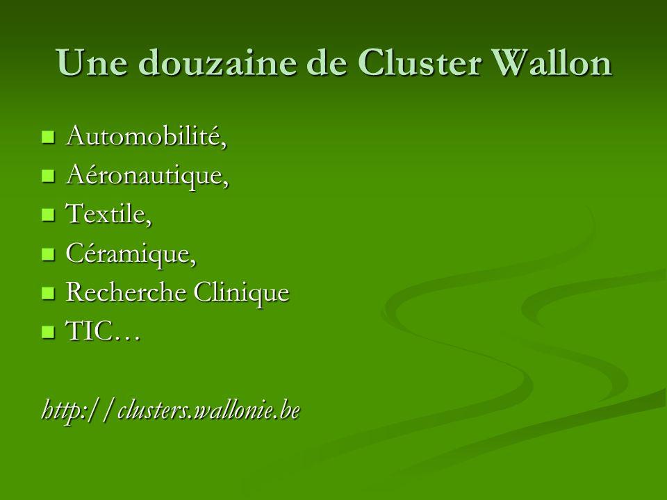 Une douzaine de Cluster Wallon