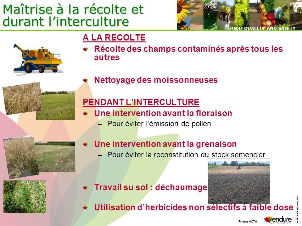 Maîtrise à la récolte et durant l'interculture