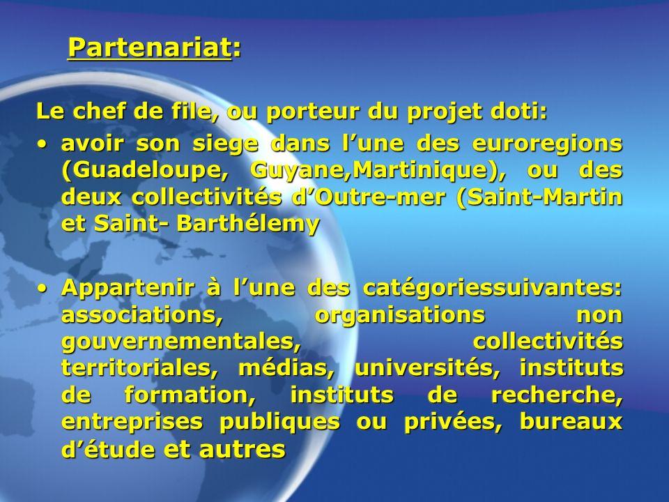Partenariat: Le chef de file, ou porteur du projet doti: