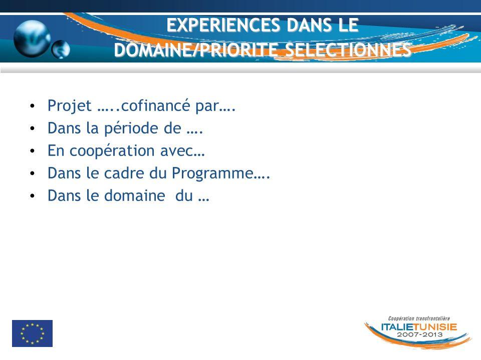 EXPERIENCES DANS LE DOMAINE/PRIORITE SELECTIONNES