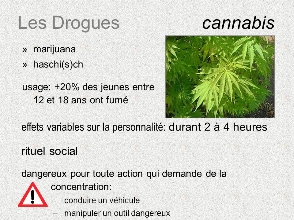 Les Drogues cannabis marijuana. haschi(s)ch. usage: +20% des jeunes entre 12 et 18 ans ont fumé.