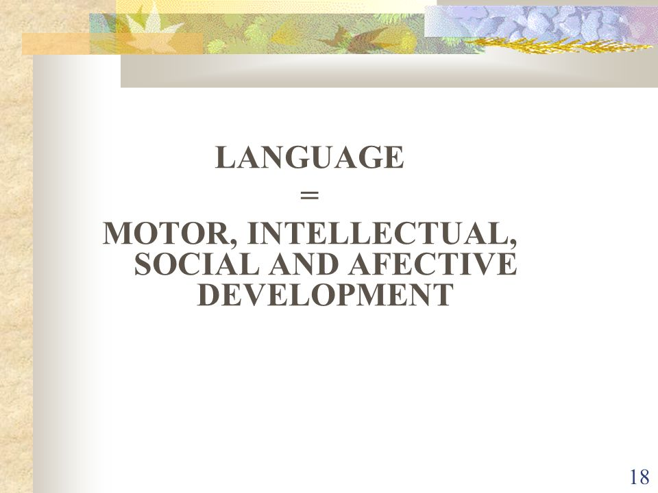 MOTOR, INTELLECTUAL, SOCIAL AND AFECTIVE DEVELOPMENT