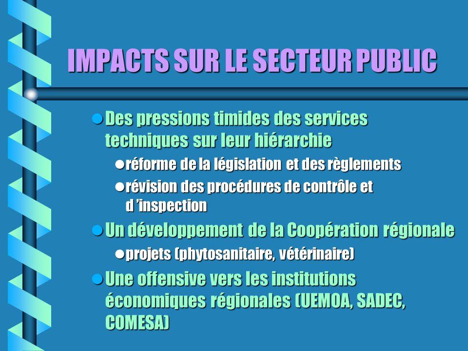 IMPACTS SUR LE SECTEUR PUBLIC