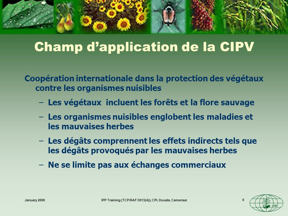 Champ d'application de la CIPV