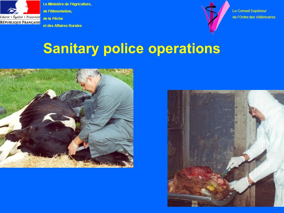 Sanitary police operations