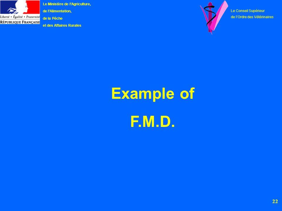 Example of F.M.D. Le Ministère de l'Agriculture, de l'Alimentation,