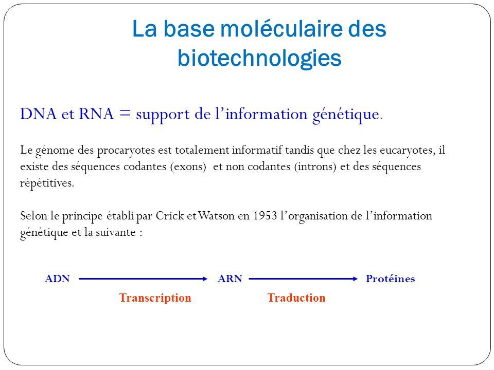 La base moléculaire des biotechnologies