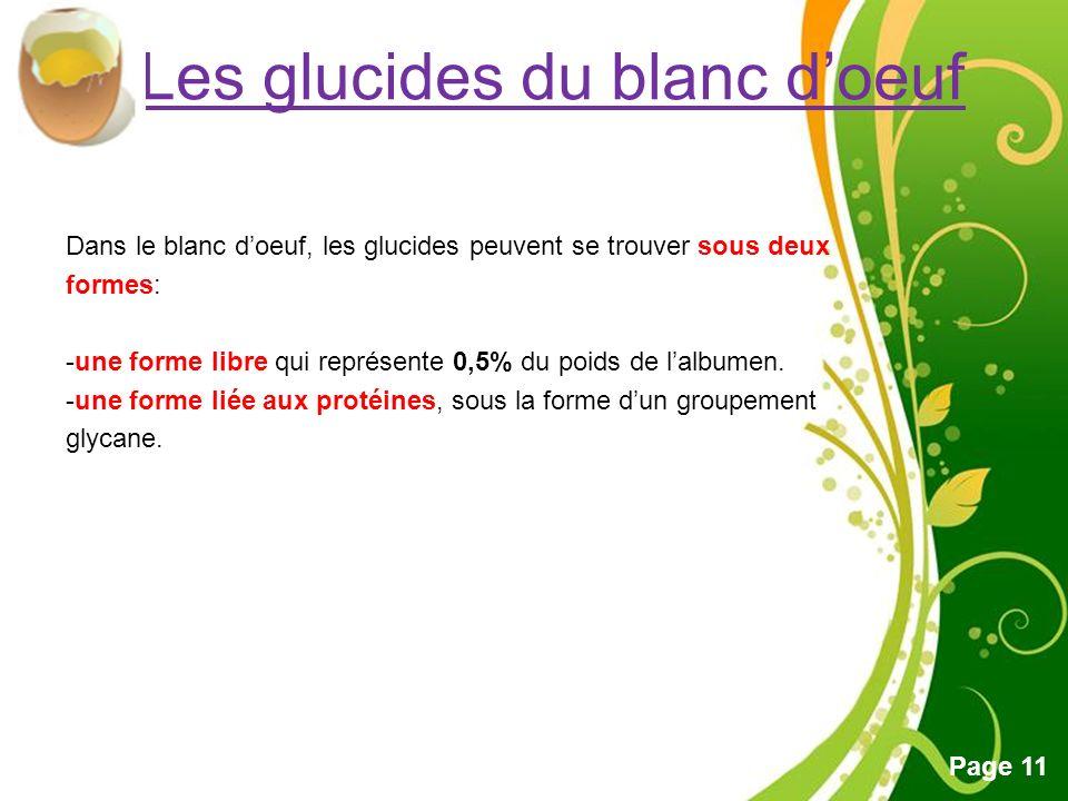 Les glucides du blanc d'oeuf