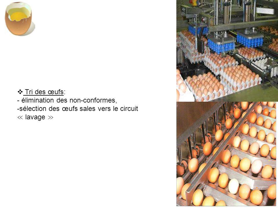 Tri des œufs: - élimination des non-conformes, sélection des œufs sales vers le circuit ≪ lavage ≫