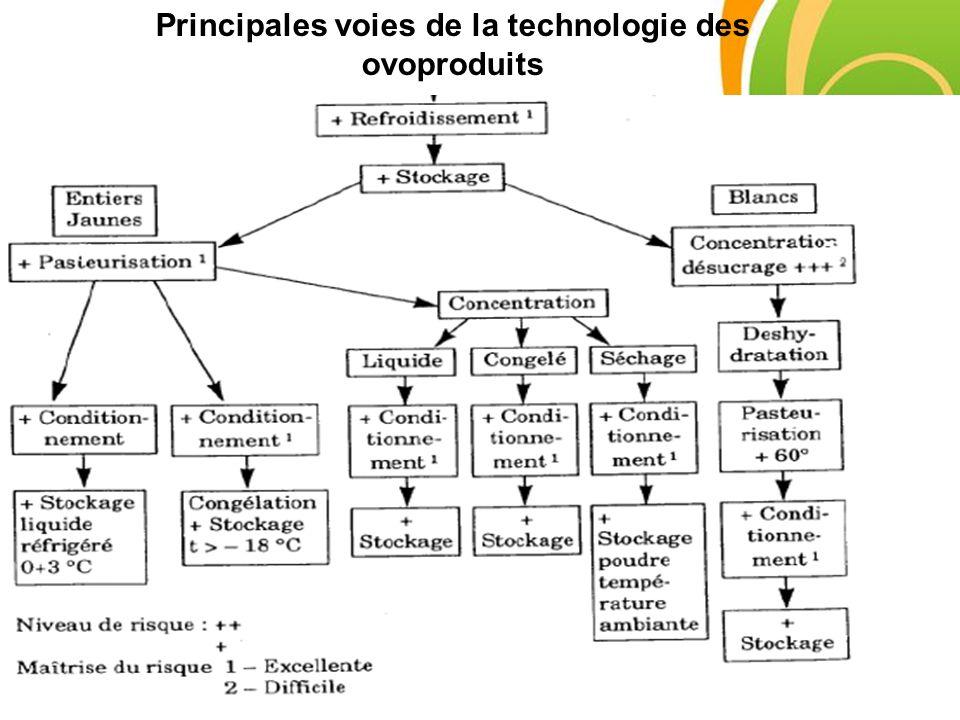 Principales voies de la technologie des ovoproduits