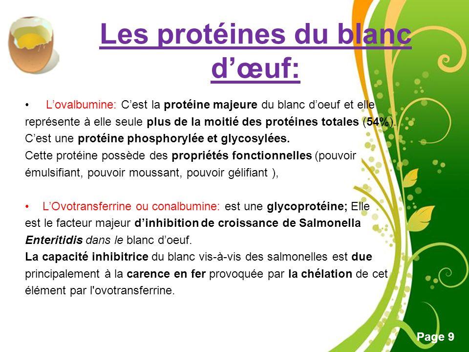 Les protéines du blanc d'œuf: