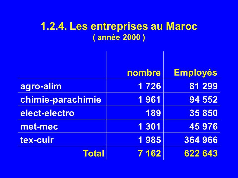 1.2.4. Les entreprises au Maroc ( année 2000 )