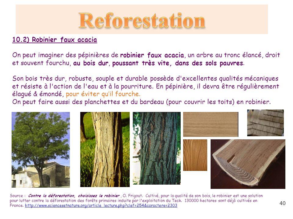 d forestations reforestations protection des for ts. Black Bedroom Furniture Sets. Home Design Ideas