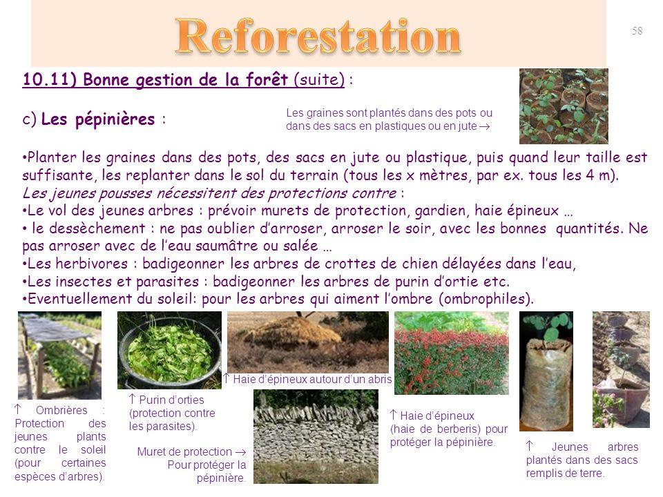 d forestations reforestations protection des for ts ppt t l charger. Black Bedroom Furniture Sets. Home Design Ideas
